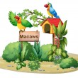 Two colorful parrots above a signboard and a birdhouse - Stock Vector