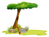 A gray cat under a tree with a hole — Stock Vector