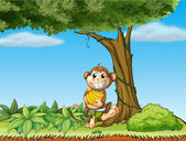 A monkey with bananas near a tree with vine plants — Stock Vector