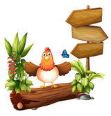 Arrow boards with a hen and a butterfly — Stock Vector