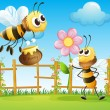 Two big bees in the garden — Stock Vector