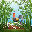 A rooster in the bamboo forest — Stock Vector