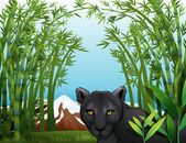 A black panther at the bamboo forest — Stock Vector