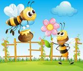 Two big bees in the garden — Stock Vector