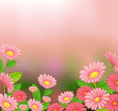 A view of the beautiful pink flowers — Stock Vector