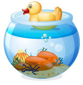 An aquarium with a rubber duck — Stock Vector