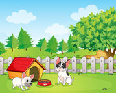 A backyard with two dogs — Stock Vector