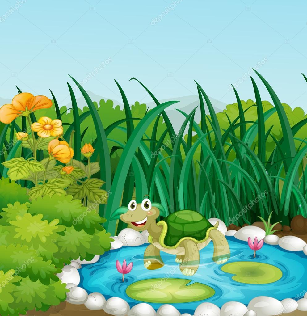 laghetto ninfee una tartaruga nel laghetto con ninfee vettoriali stock