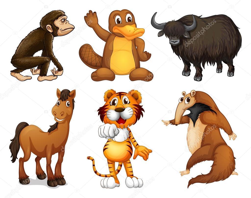 sei diversi tipi di animali a quattro zampe vettoriali stock interactimages 22822372. Black Bedroom Furniture Sets. Home Design Ideas