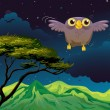 An owl flying in the middle of the night — Stock Vector #23023624