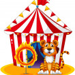 A circus tent at the back of the tiger and the ring of fire — Stock Vector #23027778