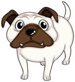 A white bulldog — Stock Vector
