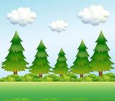 Green pine trees — Stock Vector