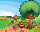 Two lions in the garden with a wooden signboard — Stock Vector