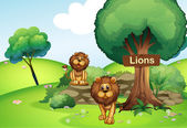 Two lions at the forest with a wooden signboard — Stock Vector