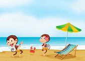 Two monkeys dancing with a little crab at the beach — Stock Vector