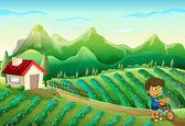 Un ragazzo con la bicicletta presso la fattoria — Vettoriale Stock