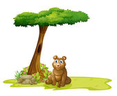 Un árbol con un hueco en la parte trasera de un oso — Vector de stock