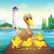 A mother duck with four baby ducks in the wooden bridge — Stock Vector