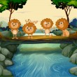 Four young lions at the river — Stock Vector