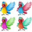 Stock Vector: Four adorable parrots