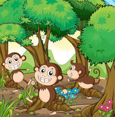 Three monkeys playing at the forest — Stock Vector
