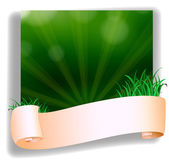 An empty template in front of the green grass — Stock Vector