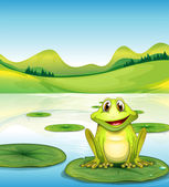 A frog above the waterlily in the pond — Stock Vector