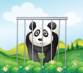 A panda inside the cage — Stock Vector