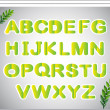 Stock Vector: A paper with the letters of the alphabet