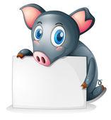 空の看板を保持している黒豚 — ストックベクタ