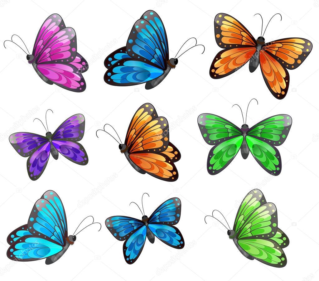 在白色背景上的九个七彩蝴蝶的插图— 矢量图片作者 interactimages