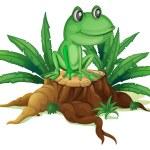 Постер, плакат: A trunk with a frog