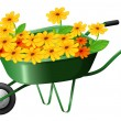 Stock Vector: Pushcart full of flowers