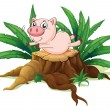 A pig balancing above a wood — Stock Vector
