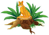 A trunk with a cheetah — Stock Vector