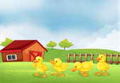 Four chicks in the farm with a barn and a wooden fence — Stock Vector