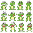 Stock Vector: Different faces of frog