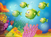 A group of green piranhas under the sea — Stock Vector