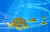 Turtles under the sea — Stock Vector