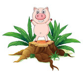 A big tree with a pig — Stock Vector