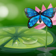 A blue butterfly and the pink flower at the pond - Stock Vector