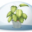 Stock Vector: A green plant inside a round cystal