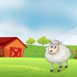 A sheep in the farm with barn and wooden fence at the back — Stock Vector