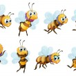 Eight bees in different positions — Stock Vector