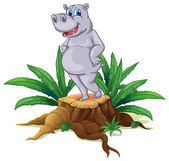 A hippopotamus standing on a stump with leaves — Stock Vector