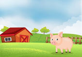 A pig in the farm with barn — Stock Vector