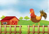 A rooster above the fence — Stock Vector