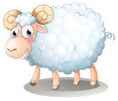 A hairy sheep — Stock Vector