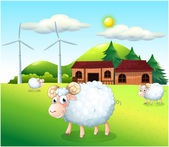 Sheeps at the farm with windmills — Stock Vector